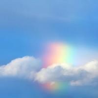 Обзор: Богословская рефлексия на однополые взаимоотношения