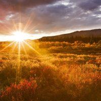 Восход над полем