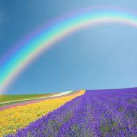 Господь и радуга