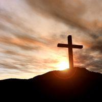 «Мне не нужно ваше милосердие»