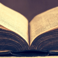 Обисексуальности в библии фото 283-976
